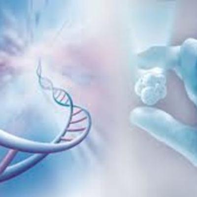 antecedestes de la bioetica timeline