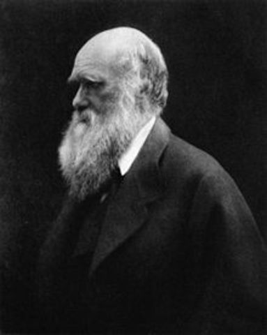 Social Darwinism and it's impact on the modern world