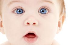 Child Developmental Milestones Infant-Age 6 timeline