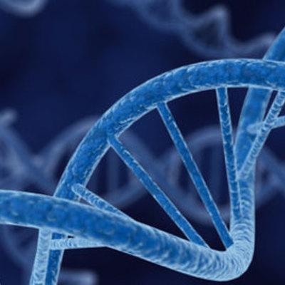 Scientific Revolution-Biology timeline