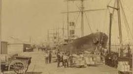 FROZEN BEEF EXPORT 1888/1895 timeline