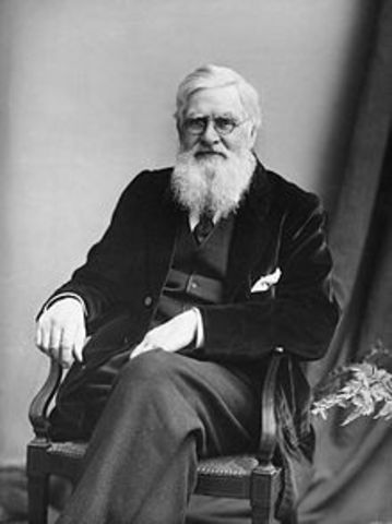 Alfred Wallace (1823-1913)