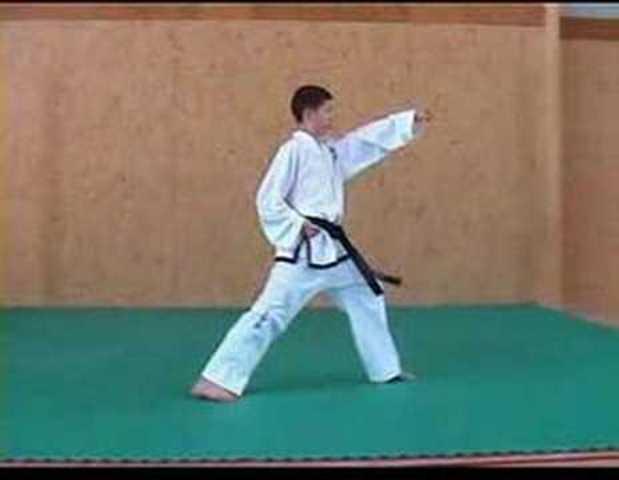 Gold medal for Taekwondo