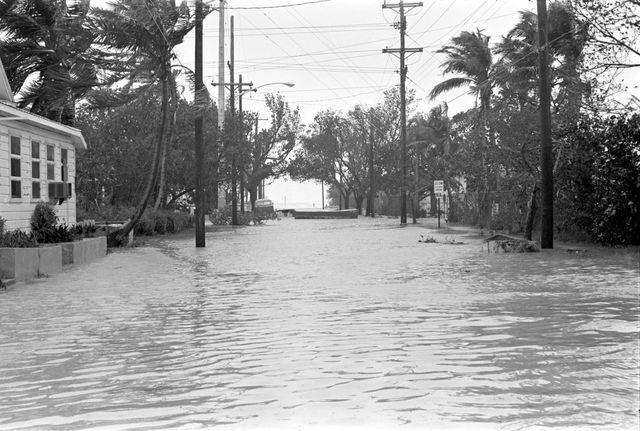 Hurricane Betsy (Santa Clara)