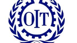 Organizacion internacional del Trabajo  timeline
