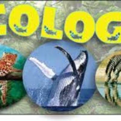 Antecedentes de la Ecología Rocío Rod timeline
