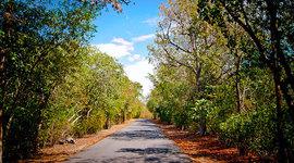 Historia de los pueblos de Puerto Rico/Guánica timeline