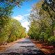 Entrada bosque seco guanica