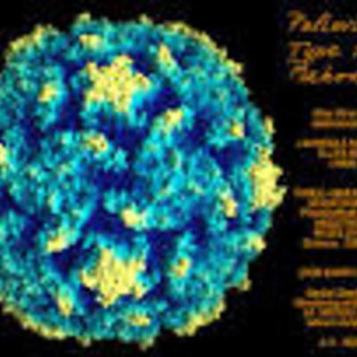 Poliomyelitis timeline
