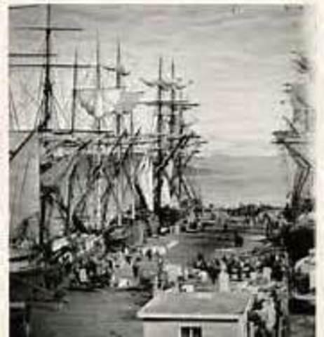 Barry O' Neil immigration story 1860-1914 Bennett Krikorian