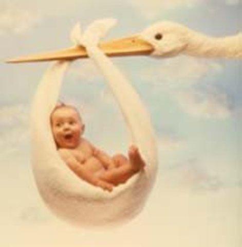 El nacimiento.