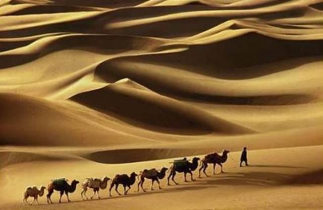 Muhammad's traveling