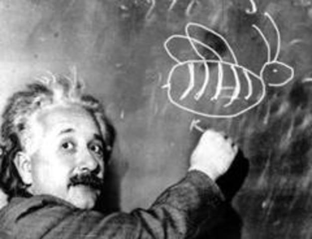 Einstein receives his degree