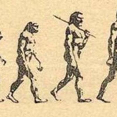 El origen del hombre timeline