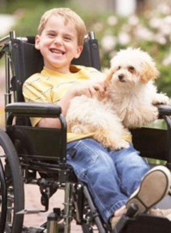 Handicapped Children Act