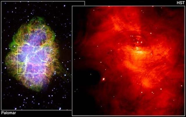 Crab Nebula Pulsar Discovered