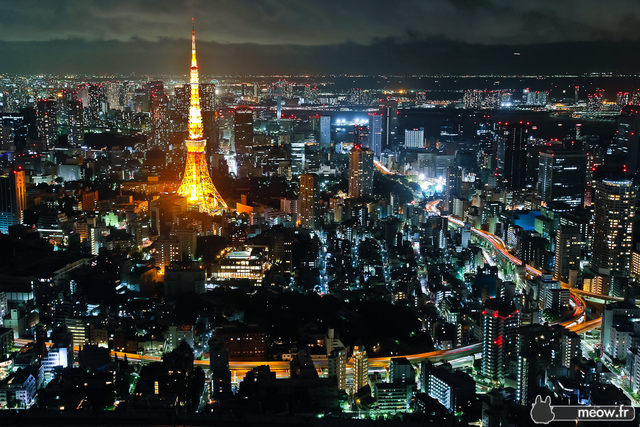 Tokyo Becomes Japan's Capital