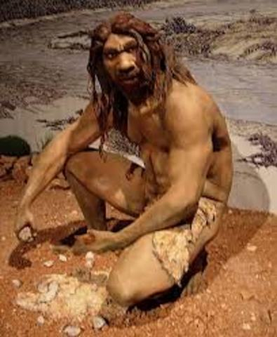 Homo Heidelbergensis Evolves