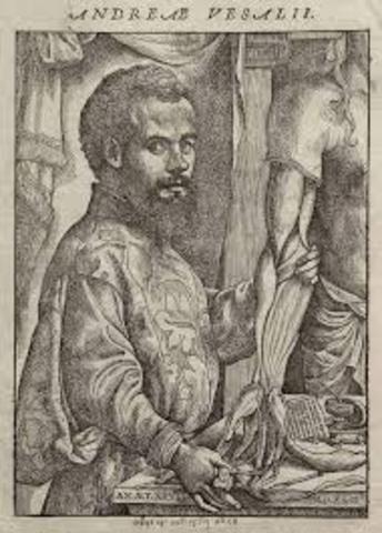 Andrés Vesalio