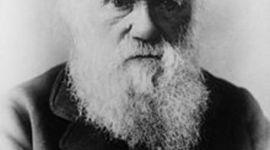 Vida de Darwin timeline
