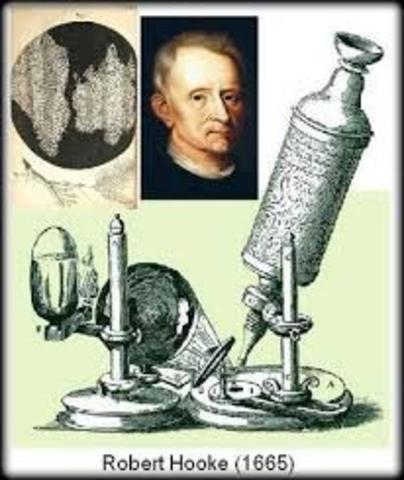 Microscopio de hooke