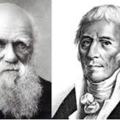 Linea del tiempo. Desarrollo de las teorias de la evolucion. timeline