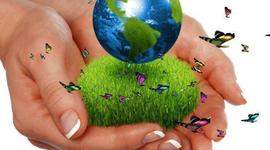 Los Precursores de la ecología timeline