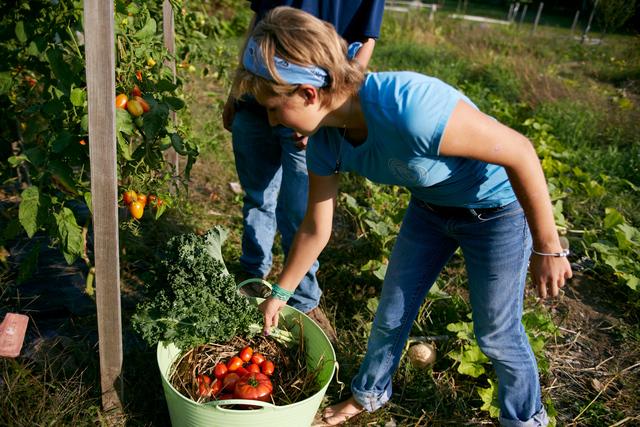 Community Garden Established