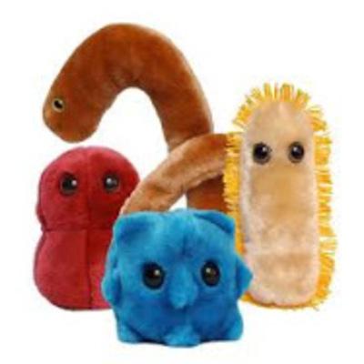 Eventos Importantes de la Microbiologia timeline