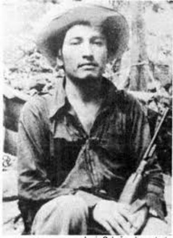 Guerrilla Sierra Madre del sur