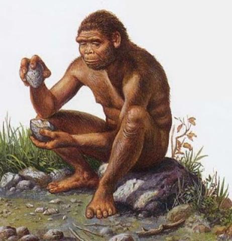 250 000 a.C. Primeras Herramientas. Edad de Piedra