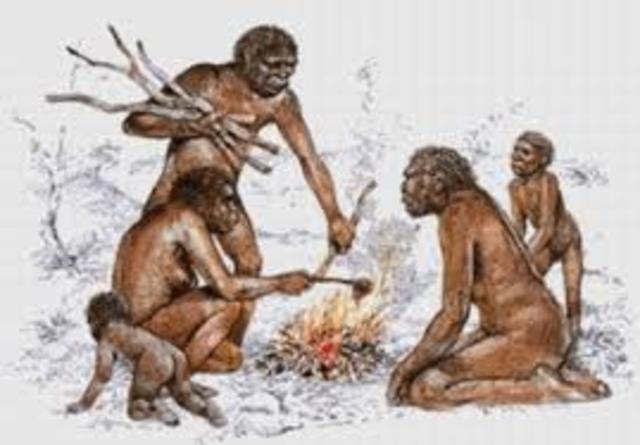 250 000 a.C. Control del fuego. Edad de Piedra