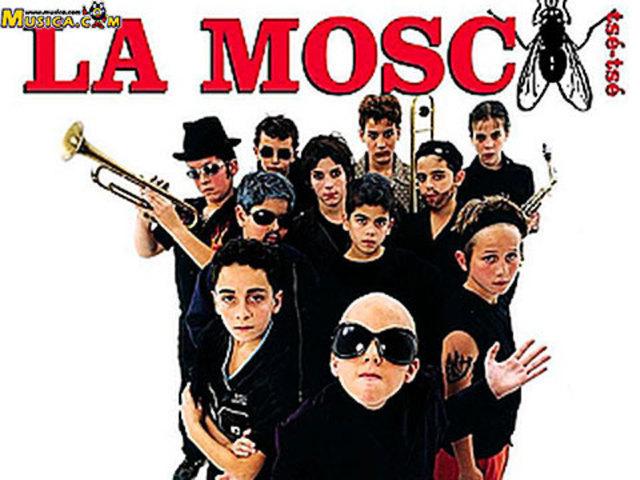 PARA NO VERTEMAS - MOSCA TSE TSE