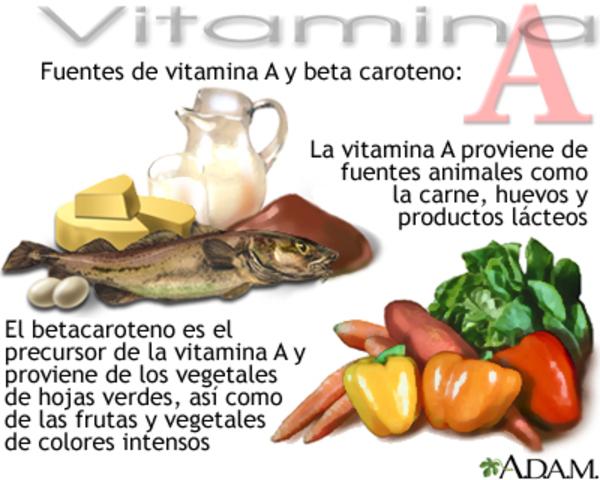 Descubrimiento de la vitamina A