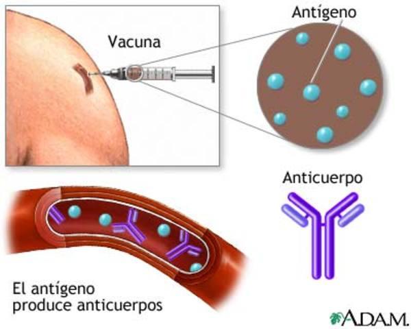 Prevención de la difteria por inmunización