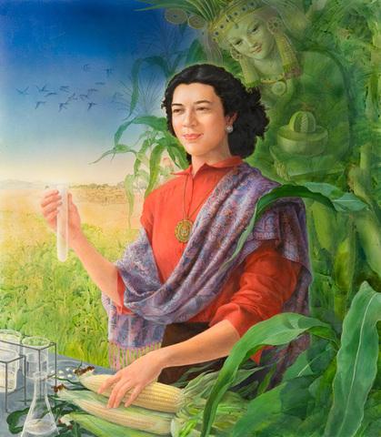 Evangelina Villegas creó un maíz con el doble de calidad proteínica y con 10 por ciento más de grano.