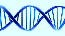 Histora de la genética timeline