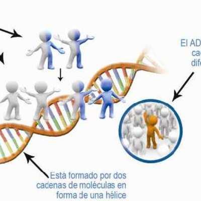 Historia del DNA timeline