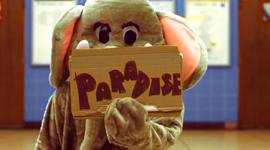 paradise timeline