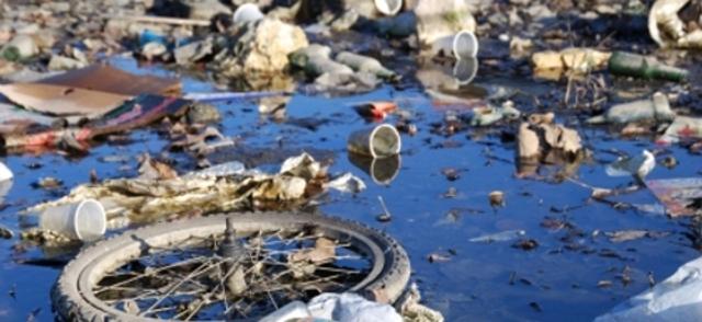What Marine debris caused