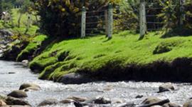 Línea del Tiempo del Río Tunjuelo timeline