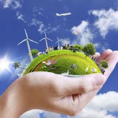 Environmental Timeline