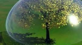 sostenibilidad timeline