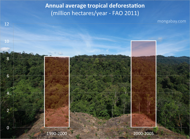 article global deforestation For permission to reprint individual articles or chapters, please fax your request  with  causes of deforestation of the brazilian amazon/sergio margulis p cm.