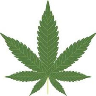 Legalization of Marijuana in America timeline
