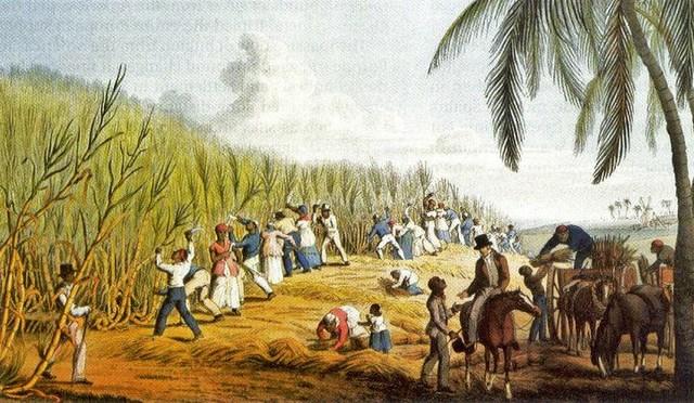 salutary neglect american revolution