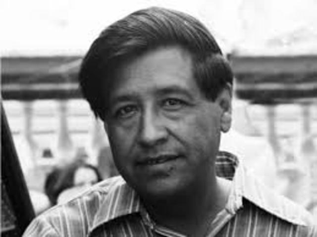 Cesar Chavez: The Chicano Civil Rights Movement Timeline