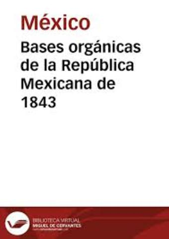 BASES ORGÁNICAS