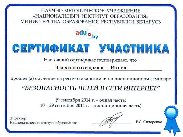 """Сертификат участника очно-дистанционного семинара """"Безопасность детей в сети Интернет"""""""