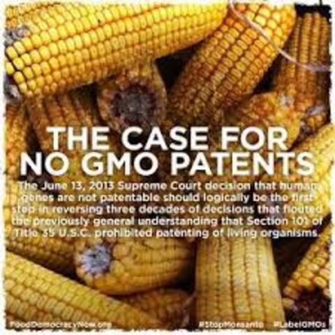 The first GMO patent is issued.